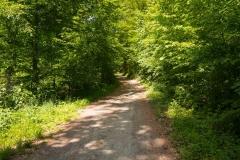 Bergischer-Panoramasteig-–-Etappe-1-2-von-21
