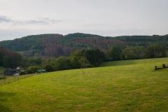 Bergischer Panoramasteig - Etappe 2 | Morgentlicher Blick über die Felder
