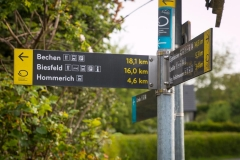 Bergischer Panoramasteig - Etappe 2 | Auf nach Biesfeld