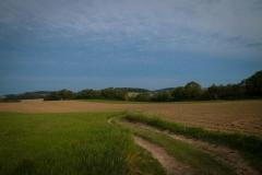 Bergischer Panoramasteig - Etappe 2 | Unterwegs auf Feldwegen